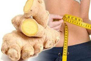 ginger for weight loss reviews